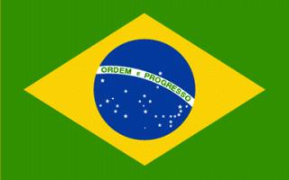 Бразилия — сообщение доклад (2, 3, 7 класс. окружающий мир. география)