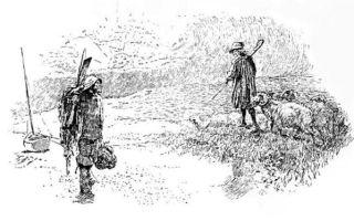 Пастух — краткое содержание рассказа шолохова