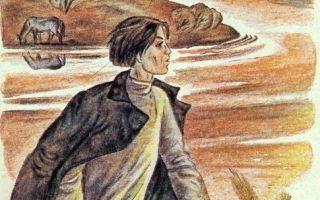 Кому на руси жить хорошо — краткое содержание поэмы некрасова