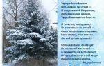 Анализ стихотворения тютчева чародейкою зимою 3, 5 класс