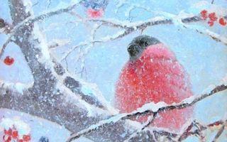 Анализ стихотворения державина снегирь