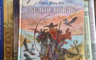 Белый вождь — краткое содержание книги рида