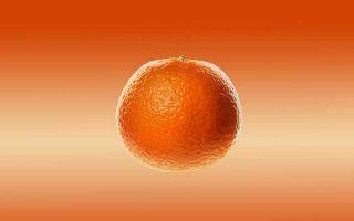 Заводной апельсин — краткое содержание романа энтони бёрджесса