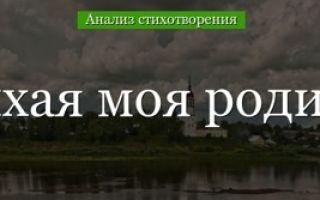 Анализ стихотворения привет россия рубцова краткий