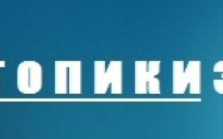 Сочинение про интернет на русском языке