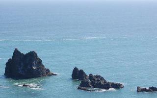 Океания — сообщение доклад (7 класс география)