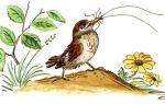 Тараканище — краткое содержание сказки чуковского