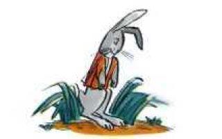 Заяц и еж — краткое содержание сказки гримм