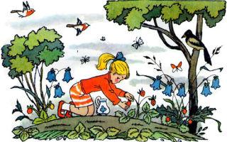 Дудочка и кувшинчик — краткое содержание сказки катаева