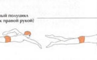 Плавание как вид спорта — сообщение доклад (2, 4, 9 класс)