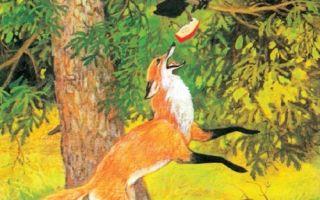 Ворона и лисица — краткое содержание басни крылова