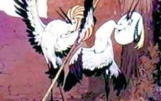 Калиф аист — краткое содержание сказки гауфа
