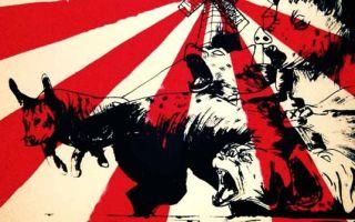 Скотный двор — краткое содержание повести оруэлла по главам