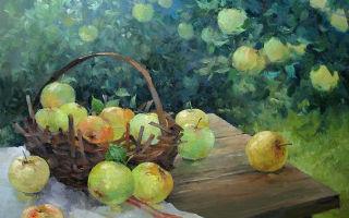 Красное яблоко — краткое содержание рассказа айтматова