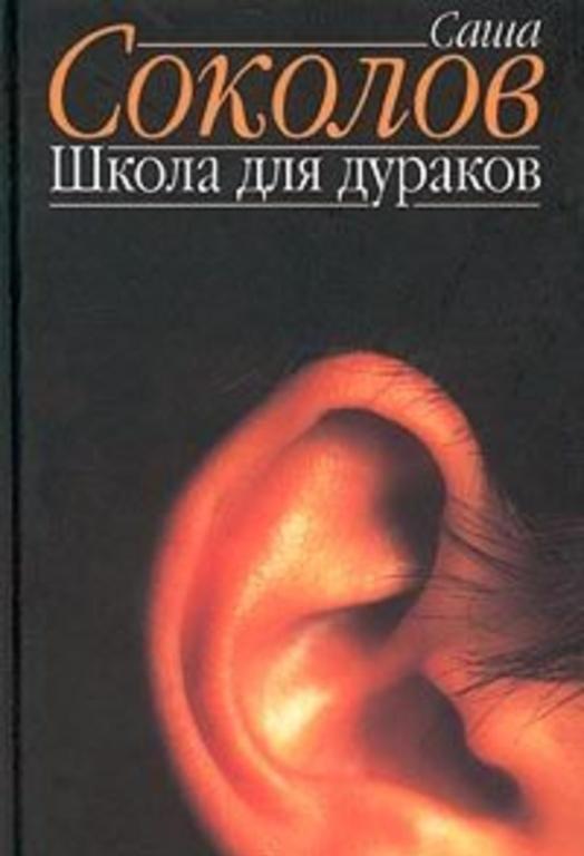 Школа для дураков - краткое содержание романа Соколова