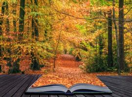Анализ стихотворения Осень Есенина