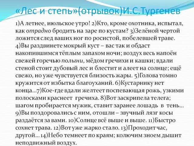 Анализ рассказ Лес и степь Тургенева