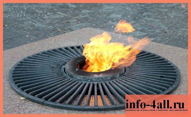 Живое пламя - краткое содержание рассказа Носова