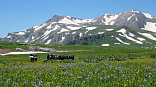 Кавказские горы - сообщение доклад (4 класс окружающий мир)