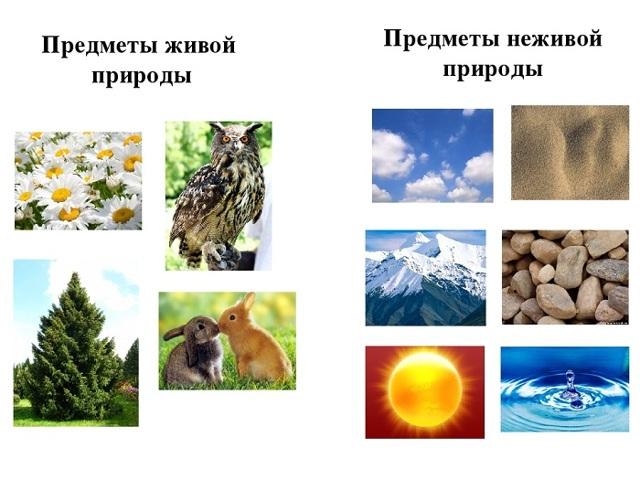 Летние явления природы 2 класс