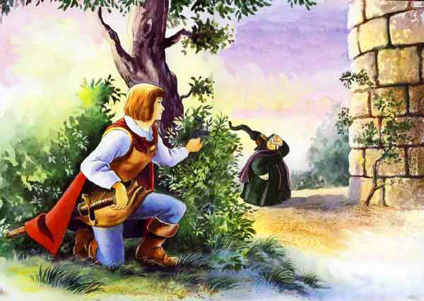 Рапунцель - краткое содержание сказки братьев Гримм