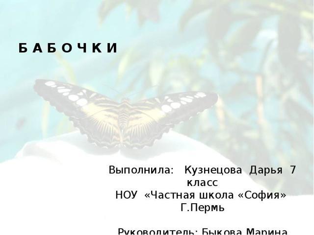 Бабочки - сообщение доклад (2, 7 класс. Биология. Окружающий мир)
