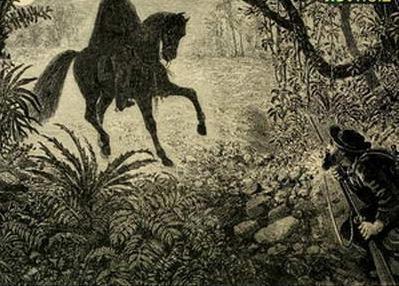 Всадник без головы - краткое содержание романа Рид