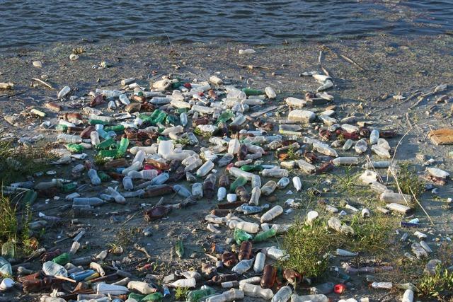 Почему нельзя загрязнять воду? - сообщение доклад