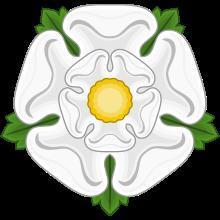 Война Алой и Белой розы краткое содержание Войны роз