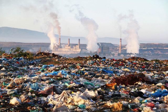 Сочинение на тему 5 июня Всемирный день окружающей среды