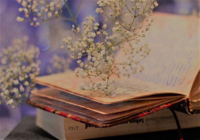 Сочинение Примеры драгоценных книг из жизни
