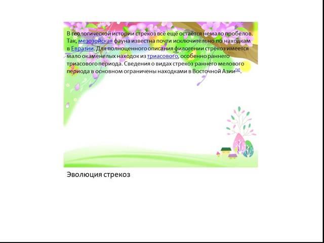 Скаты - сообщение доклад (7 класс биология)