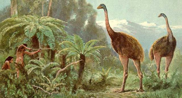 Доклад на тему Вымершие животные (сообщение)