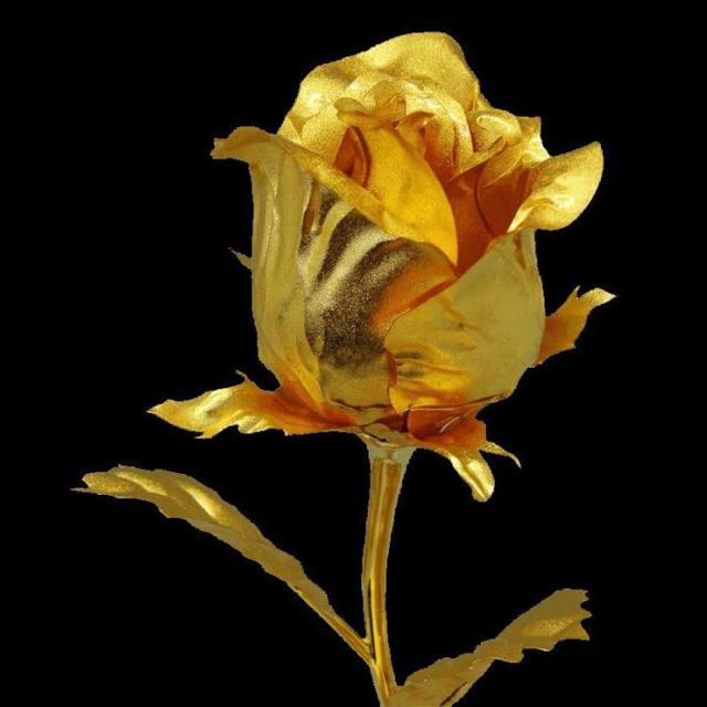 Золотая роза - краткое содержание Паустовский