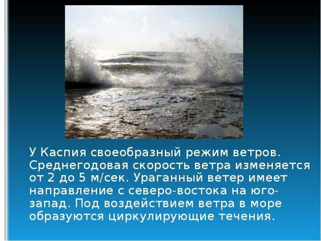 Каспийское море - доклад сообщение (4, 8 класс. География. Окружающий мир)