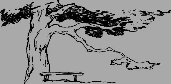 Ранний восход - краткое содержание рассказа Кассиля
