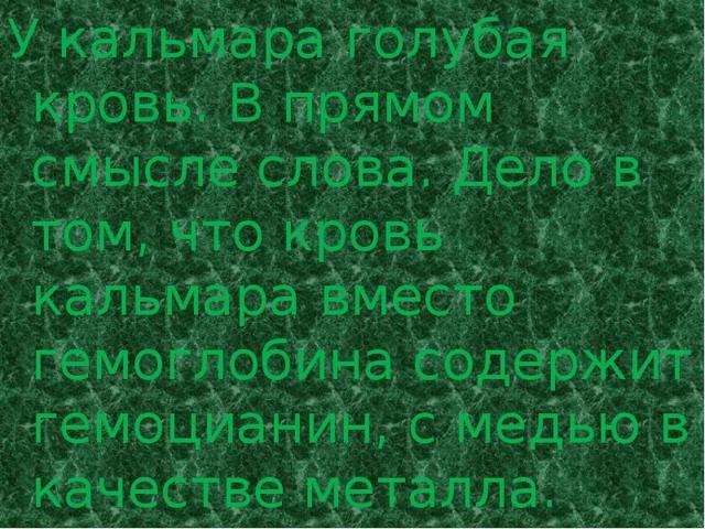 Кальмар - сообщение доклад (3, 7 класс, Окружающий мир, Биология)