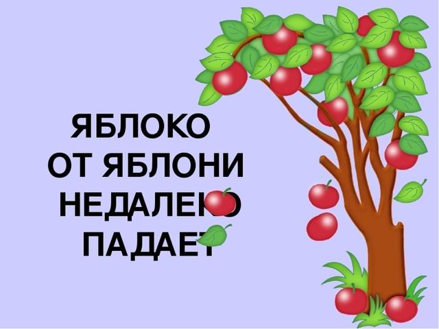 Сочинение Яблоко от яблони недалеко падает