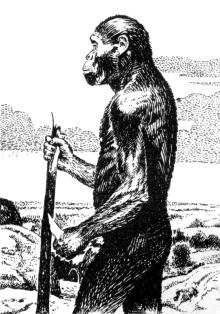 Происхождение человека - сообщение доклад