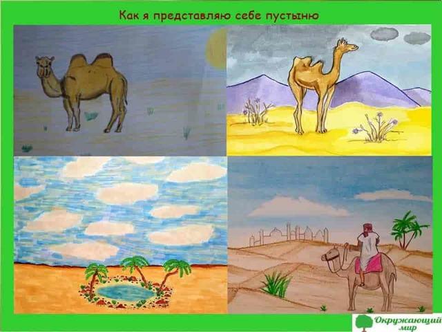 Пустыня - доклад сообщение (4 класс окружающий мир, 7 класс)