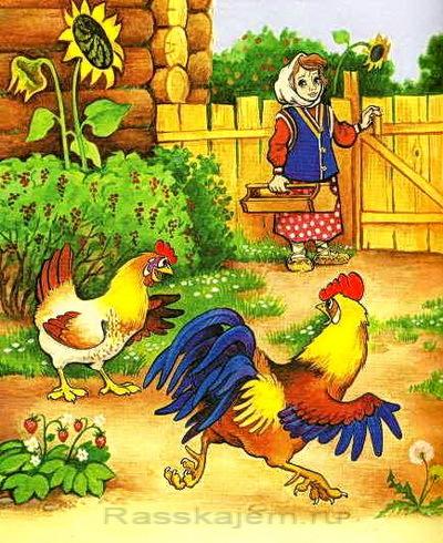 Петушок и бобовое зернышко - краткое содержание сказки