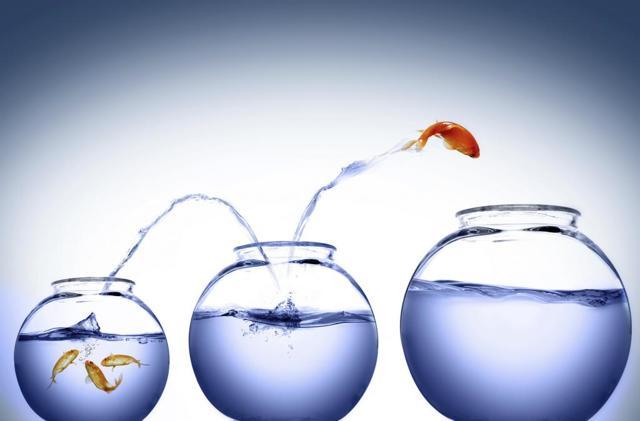 Сочинение на тему Чем отличается мечта от цели? (11 класс)