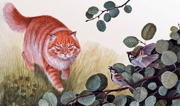 Красная горка - краткое содержание сказки Бианки