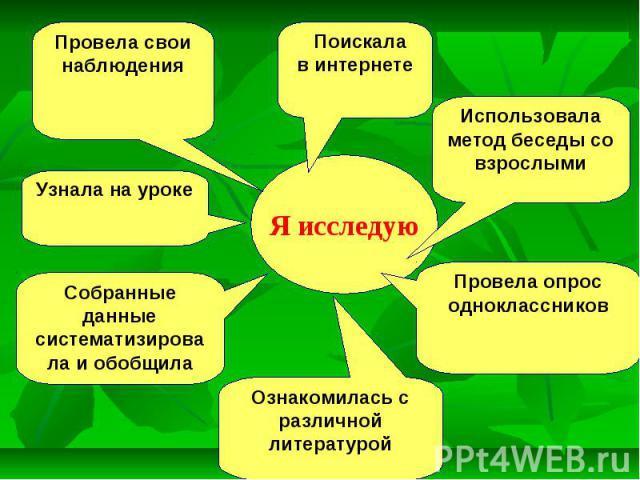 Липа - сообщение доклад (2, 3, 4, 5 класс окружающий мир)