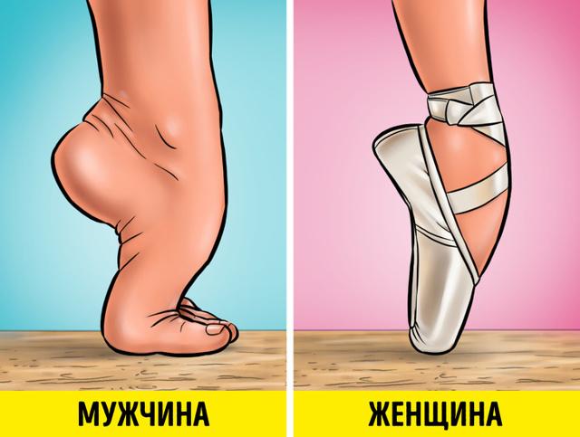 Сочинение Впервые в театре оперы и балета (6 класс русский язык)
