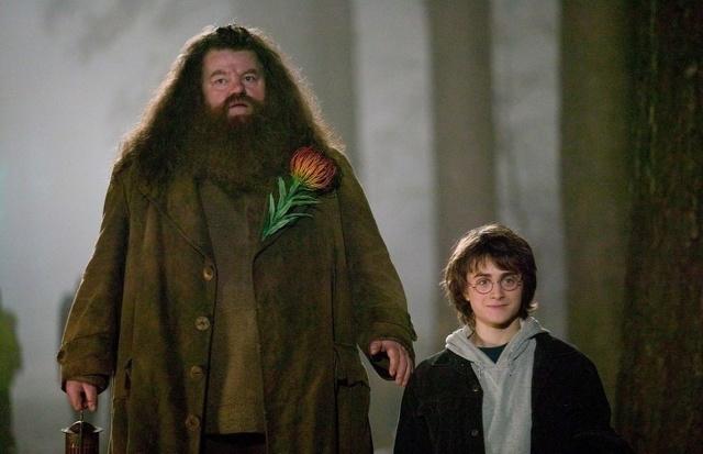 Гарри Поттер и философский камень - краткое содержание книги Роулинг