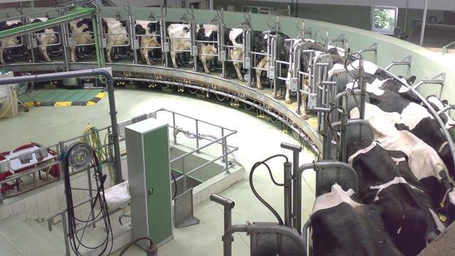 Пищевая промышленность - сообщение доклад