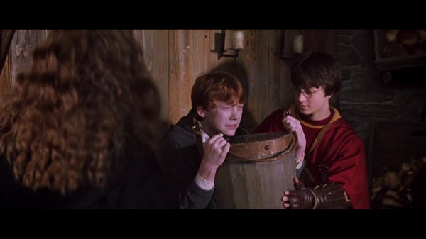Гарри Поттер и Тайная комната - краткое содержание книги Роулинг