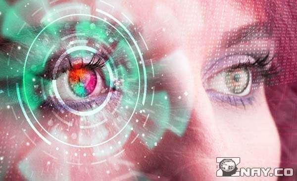 Сочинение В чем разница между мечтателями и реалистами?