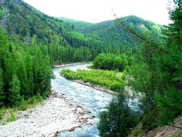 Река Енисей - доклад сообщение